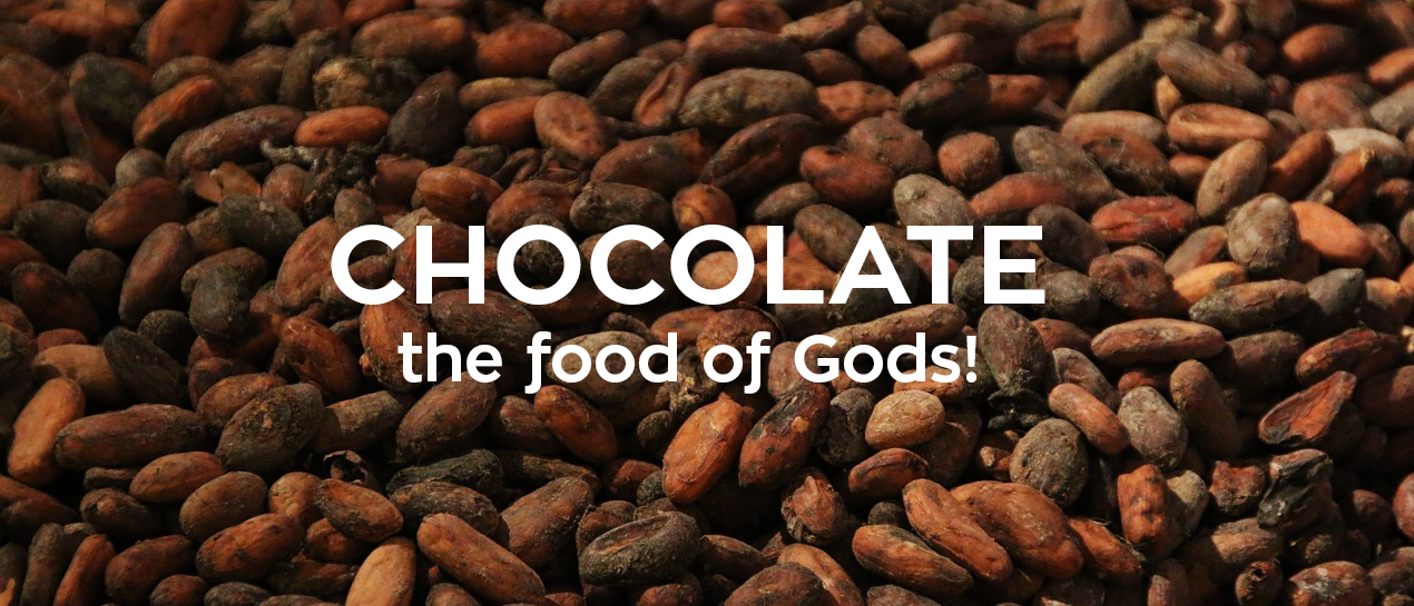 Chocolate-the-food-of-gods