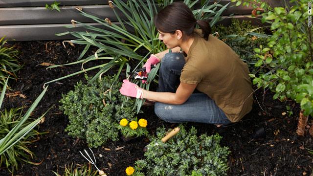 t1larg.gardening.gi