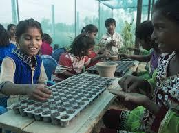 agricultur-school