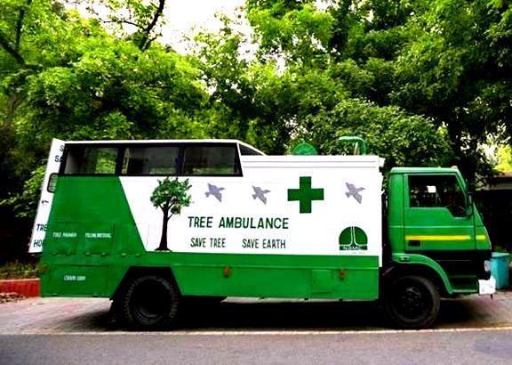 Tree-Ambulance-The-Hindu-Current-Affairs-29-May