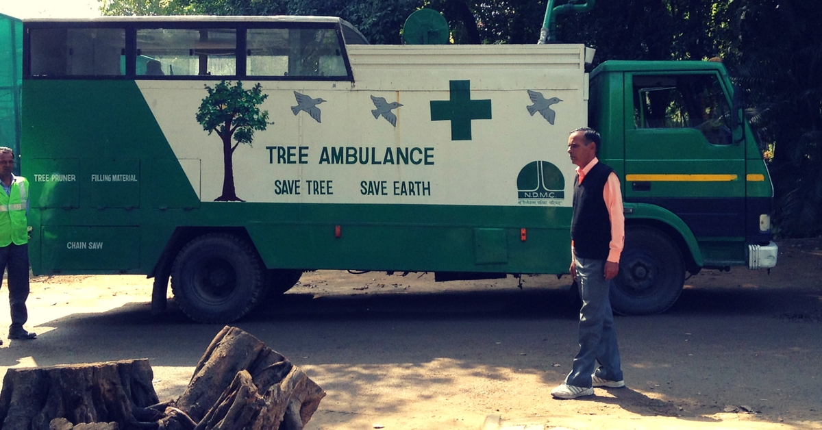 tree-ambulences