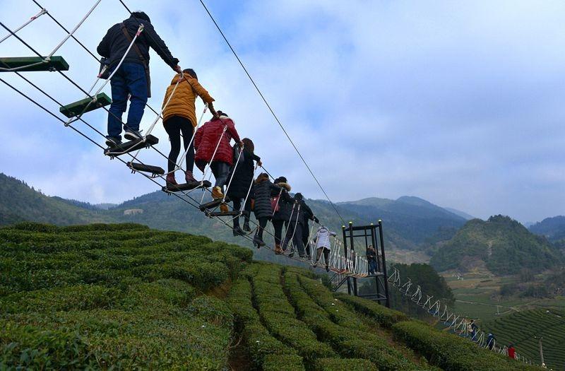 air-corridor-xuanen-tea-park-76