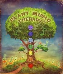 plant music